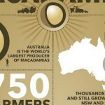 Australian Macadamias: an Infographic