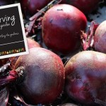 Bottling the Goodness – Preserving from my Garden, an e-book giveaway!